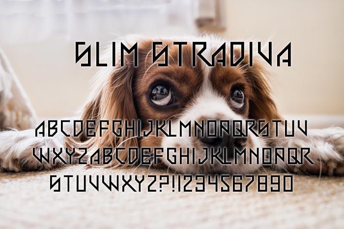 Slim Stradiva