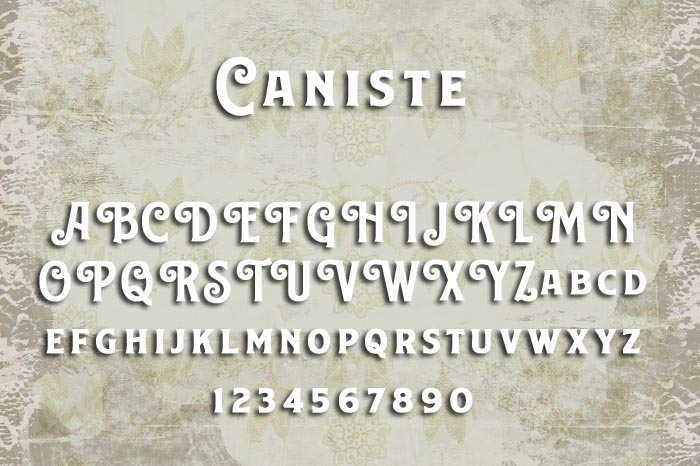 Caniste