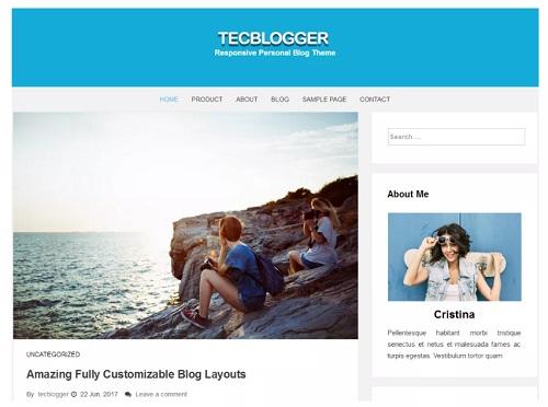 tecblogger theme